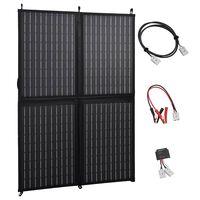vidaXL Skladacia solárna nabíjačka 100 W 12 V