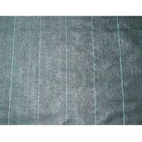 Nature Textília proti burine 3,3x5 m, čierna