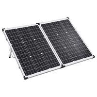 vidaXL Skladací solárny panelový kufrík 120 W 12 V
