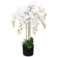 vidaXL Umelá rastlina, orchidea s kvetináčom 75 cm, biela