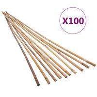 vidaXL Záhradné bambusové kolíky 100 ks 120 cm
